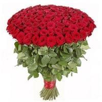 201 Элитная Роза «Гран При»