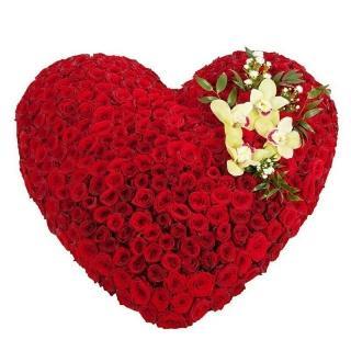 Огромное Сердце из Роз