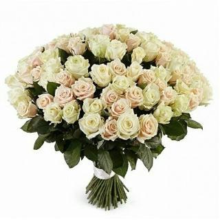 101 Белая и Кремовая Розы