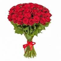 51 Гигантская Роза «Эксплорер»