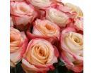 Количество цветов:: 21