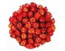 Количество цветов:: 51