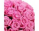 Количество цветов:: 71