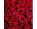 1001 Роза «Гран При» в Корзине