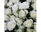 101 Роза «Сноуфлейк» в Корзине