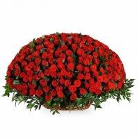 501 Роза «Ред Наоми» в Корзине