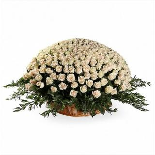 501 Роза «Талея» в Корзине