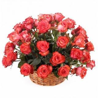 51 Роза «Игуана» в Корзине