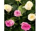 Корзина с кремовыми и розовыми Розами