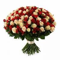 Королева Красоты (101 Роза)