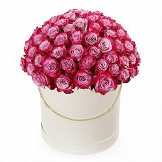 101 Роза «Дип Перпл»
