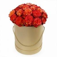 25 Роз «Хай Мэджик»
