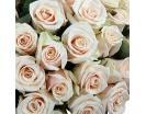 Розы «Талея» в шляпной коробке