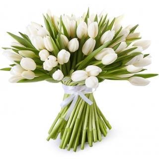 Букеты из Белых Тюльпанов