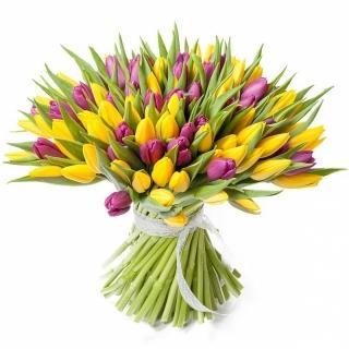 Букеты из Жёлтых и Фиолетовых Тюльпанов