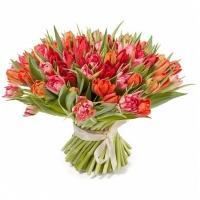 Букеты из Красно-Розовых Тюльпанов
