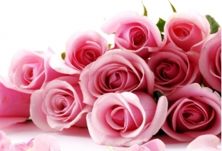 Как правильно выбрать букет роз