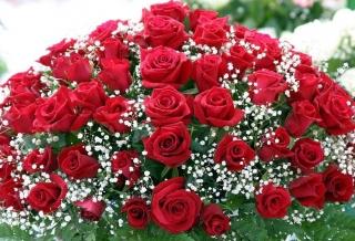 Красивый букет из роз: торжественнее подарка не придумать!